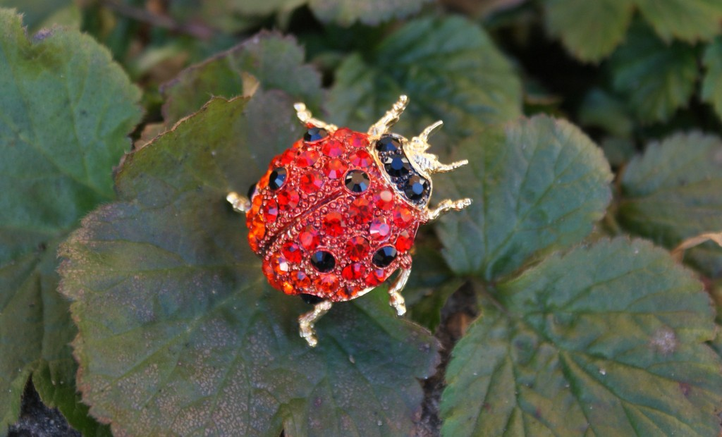 Ladybird Ring